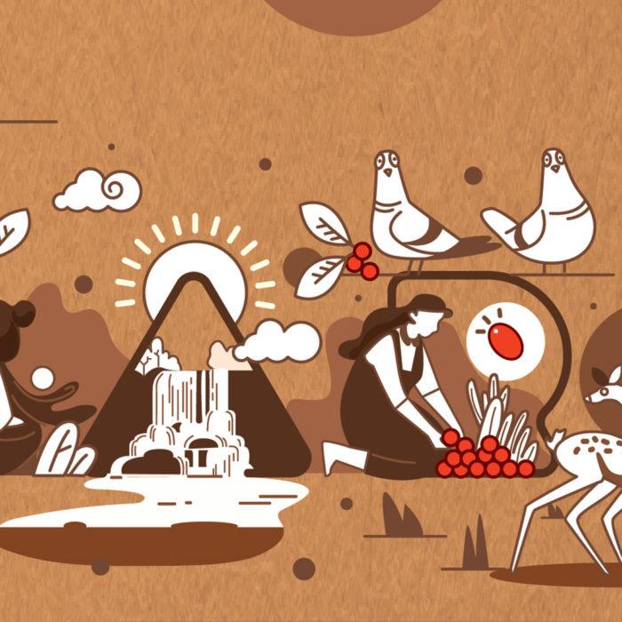 Baarbara Chocolates